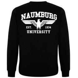 NAUMBURG Pullover schwarz